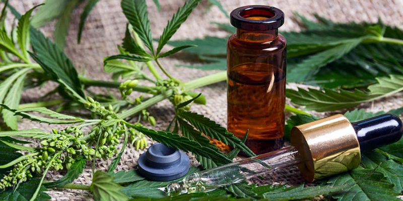 CBD Oil – What to Know